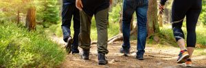 Lower half of people hiking in forest